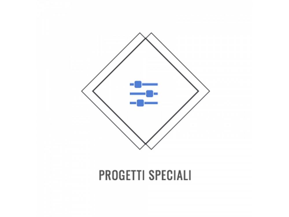 Consulenze e progetti speciali
