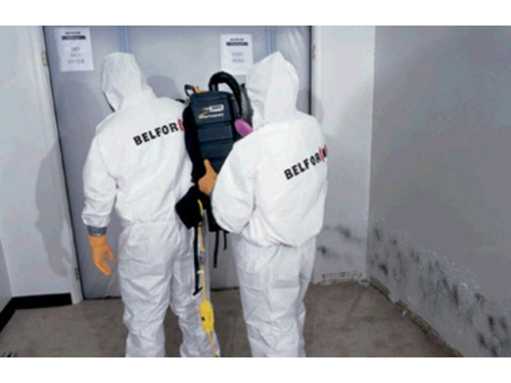 Servizi di decontaminazione da muffe